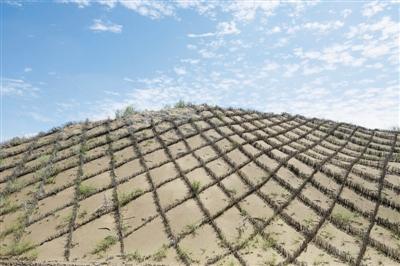 让沙漠都变绿洲,那是违背自然规律