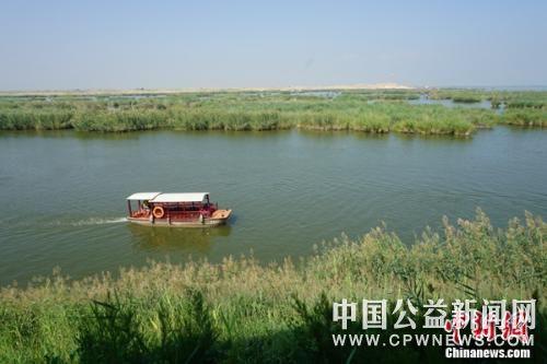 走进宁夏沙湖:保护湿地生态 打造塞上江南新名片