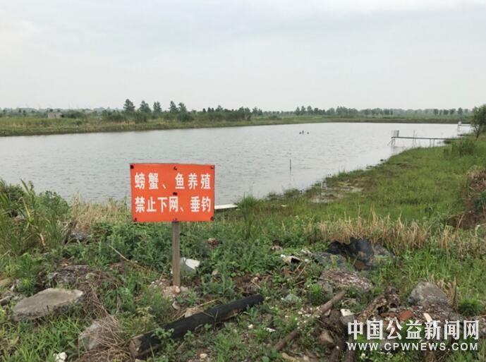 长江豚类省级自然保护区违法开发 江滩湿地破坏严重