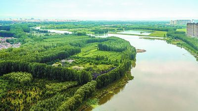 """北京将增百万亩""""无界森林"""""""