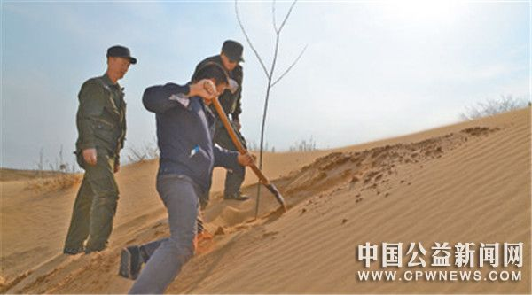 探索多种治沙模式,黑龙江泰来县—— 40多年,筑起一道绿色屏障